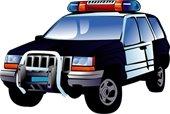 police car pic